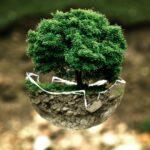 Welches Land führte das erste Umweltschutzgesetz ein?