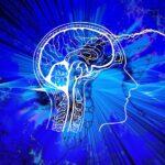 Was passiert während des Schulunterrichts im Gehirn?